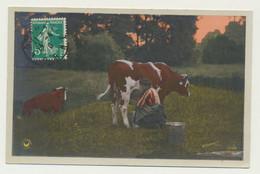 Carte Fantaisie - La Traite Des Vaches - Agriculture - Photo. M. DARNAULT - Vacas