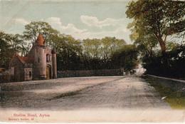 1904 Browns Series 48 Card Of Station Rd Ayton E7 1/2d Ayton DCDS - Berwickshire