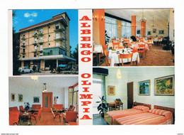 ERACLEA  MARE (VE):  ALBERGO  OLIMPIA  -  IMMAGINI  -  FG - Hotels & Restaurants