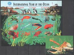 PK078 GRENADA FAUNA MARINE LIFE INTERNATIONAL YEAR OF THE OCEAN 1SH+1BL MNH - Vie Marine