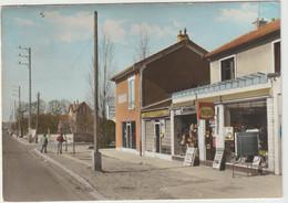 Chelles (77 - Seine Et Marne) Les Coudreaux - Avenue Des Sciences - Chelles