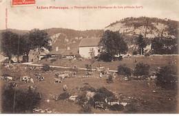 Pâturage Dans Les Montagnes Du Jura - Très Bon état - Other Municipalities