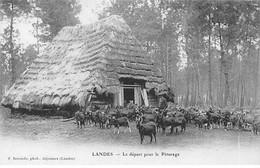LANDES - Le Départ Pour Le Pâturage - Très Bon état - Other Municipalities