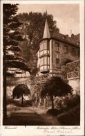 ! S/w Ansichtskarte Aus Wunsiedel, Schwarze Allee, 1933 - Wunsiedel