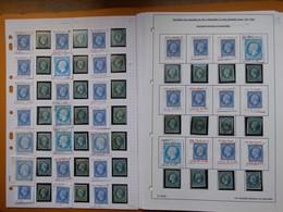 FRANCE ,204 Exemplaires Du N° 14  Par Un Spécialiste Qui A Relevé Les Anomalies.Lot Différent Des Précedents - 1853-1860 Napoléon III.