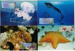 Brazil 2011 Complete Series With 4 Maximum CardMarine Fauna Animal Invertebratejellyfish Squid Octopus Sea Star - Vita Acquatica