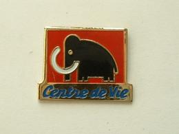 Pin's NAVETTE AMERICAINE   - SIGNE NASA 51 J  - EMAIL - STATUT DE LA LIBERTE - Spazio