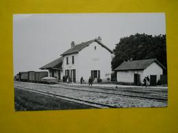 Photo ,TRAMWAY Et Gares COTE  D'OR, Collection Bourneuf ,lire Descriptif ,Savigny Les Beaune ,photo Stephen - Treinen