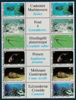 Wallis Futuna 1981 - Faune Et Flore 267-272 (x2) Avec Bande Centrale - Unclassified
