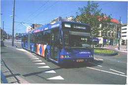 Trolley Bus Berkhof At Arnhem, Holland - Busse & Reisebusse