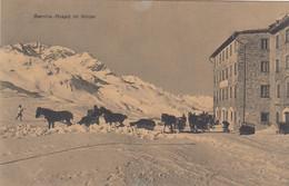 Svizzera - Grisons - Bernina  - Hospiz Im Winter - F. Piccolo - Nuova - Bella Animata - GR Grisons