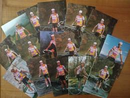 Cyclisme - 16 Cartes Publicitaires ZAHOR CHOCOLATES 1986 - Radsport