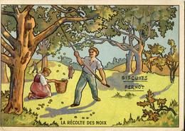 Chromos .n° 23364. Biscuits Pernot . La Recolte Des Noix . - Pernot