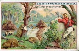 Chromos .n° 23375. Cacao Et Chocolat Van Houten. Le Castor Et Son Terrier . - Van Houten