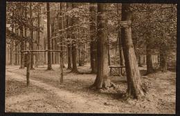 Rhode-St-Genèse - Grande Espinette - Entrée De La Forêt De Soignes Vers La Sapinière - Ed.Papeterie Lutte-Stanga - Rhode-St-Genèse - St-Genesius-Rode