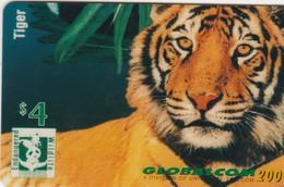 United States - Endangered Wildlife - Tiger - Other