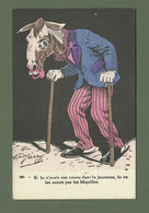 CARTE POSTALE FANTAISIE HUMORISTIQUE ILLUSTRATEUR JARRY N° 829 CHEVAL - Dressed Animals