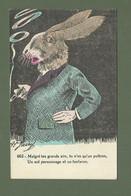 CARTE POSTALE FANTAISIE HUMORISTIQUE ILLUSTRATEUR JARRY N° 662 LAPIN LIEVRE - Dressed Animals
