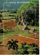 Cuba : Pinar Del Rio - Mundo
