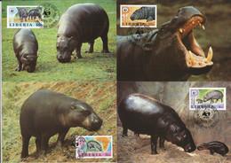 CM Liberia/WWF 1984 Pygmy Hippo - Otros