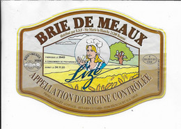 ETIQUETTE DE   FROMAGE 16 X 12 BRIE DE MEAUX E.S.F STE MARIE LA BLANCHE BEAUNE COTE D'OR - Cheese