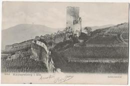 Kayserberg I Els Schlossruine - Kaysersberg