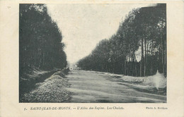 """CPA FRANCE 85 """"Saint Jean De Monts, L'Allée Des Sapins"""" - Saint Jean De Monts"""