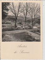SENONES  ( 88 )    JOLI  COUP  D'OEIL  SUR  SESONES   -  C P A  ( 21 / 5 / 316  ) - Senones