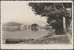 Vista Parcial Del Puerto, Pollensa, Mallorca, C.1950s - Guilera Foto Tarjeta Postal - Mallorca