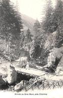 Arrivée Au Gros Mont, Près Charmey  (animée, Libr. Ch.Morel) - FR Fribourg