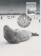 Australian Antarctic Territory  2013 Antarctic Expedition ,Weddell Seal,maximum Card - Tarjetas – Máxima