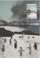 Australian Antarctic Territory  2014 Antarctic Expedition,a Summer Idyll,maximum Card - Tarjetas – Máxima