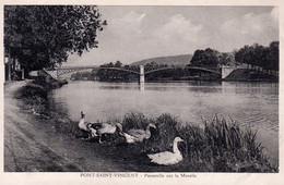 PONT SAINT-VINCENT  -  Passerelle Sur La Moselle  -  Canards - Altri Comuni