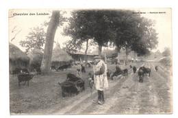 Chevrier Des Landes. - Zonder Classificatie
