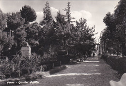PENNE (PESCARA ) -  CARTOLINA - GIARDINI PUBBLICI - VIAGGIATA PER PAVIA - Pescara