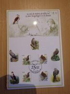 A. Buzin 25 Jaar Hoogvliegers RRR - 1985-.. Birds (Buzin)
