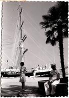 Photo Originale Matelot à Quai Devant Le Giorgio Cini à Quai (1952/1979) - Fantôme II - Le Belem. - Barcos