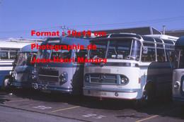 ReproductionPhotographie Ancienne De Bus Dont Mercedes, Saviem... Garés à Lourdes En 1972 - Reproductions