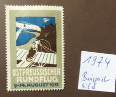 Werbemarke Cinderella Poster Stamp  Ostpreussischer Rundflug Aero 1913   #Werbe1974 - Erinnofilia