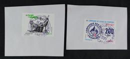 France 2021 - Europa:Faune En Danger Et Compagnie Des Guides De Chamonix Oblitéré - Used Stamps