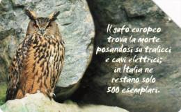 *ITALIA: ANIMALI CHE LASCIANO UN VUOTO - GUFO* - Scheda Usata - Pubbliche Figurate Ordinarie
