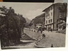 Cartolina Ligonchio Frazione Di Ventasso Prov Reggio Emilia Albergo Del Lago 1954 Corriera - Reggio Emilia