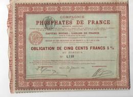 COMPAGNIE DES PHOSPHATES DE FRANCE - OBLIGATION DE CINQ CENTS FRANCS 5% - Landwirtschaft