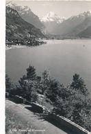 CPM-15936- Suisse - Flüelen  Mit Bristenstock -Envoi Gratuit - UR Uri