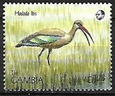Gambia - MNH ** 1990 :    Hadada Ibis  -  Bostrychia Hagedash - Sonstige