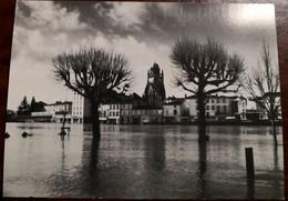 Cpm SAINTES 17 L'inondation 1994. Place Bassompierre, Le Fleuve Noie Ses Rives Sous Sa Mauvaise Humeur - Saintes