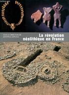 """La Révolution Néolithique En France (Collection """"Archéologies De La France"""") - Demoule Jean-Paul & Collectif - 2007 - Archeology"""