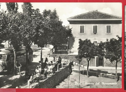 BADI  (BOLOGNA)PIAZZA DEL MONUMENTO-MOVIMENTATA CON BUS EPOCA -FG - Bologna