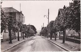 SAINT  MICHEL SUR ORGE   D 91  RUE DE SAINTE GENEVIEVE - Saint Michel Sur Orge