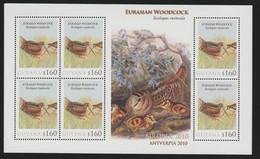 Guyana Birds S.Sheet Mnh Eurasian Woodcock Birdpex 2010 Antverpia. - Non Classificati